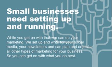 Small businesses need setting up and running